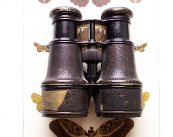 Vintage Leather Clad Binoculars - Made in Amsterdam