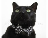 SALE!  Cat Bow Tie - Skullduggery - Halloween Cat Accessory
