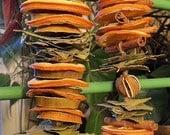 dried fruit swg