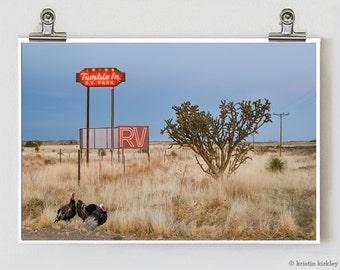 Marfa Wild Turkey Texas Modern Fine Art Photograph