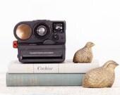 Polaroid Pronto - Instant Camera