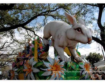 Rabbit Float Photo - Bunny Decor - Hopping Down The Bunny Trail - New Orleans Photograph - theRDBcollection - Renee Dent Blankenship