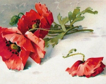 Poppies Fabric Block - Red or Orange - Repro Catherine Klein