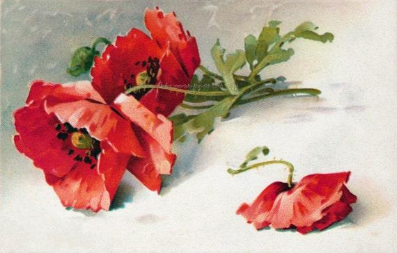 Poppies Fabric Block - Red or Orange - Repro Catherine Klein