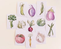 Set of 12 Vegetable Prints