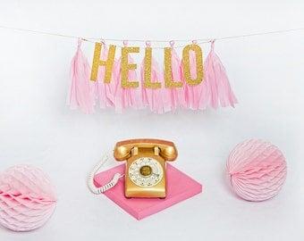 Hello Glitter Tassel Banner - One Stylish Party