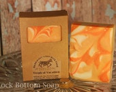 Tropical Vacation Cold Processed Handmade Goat Milk Soap 3 BARS FOR 15 DOLLARS