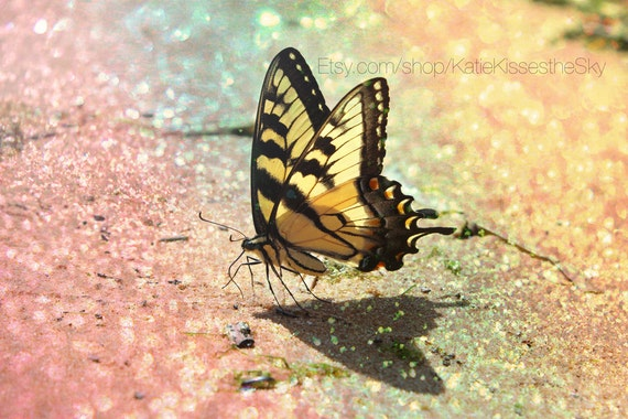 "Fine Art PRINT Butterfly Oasis Series #5 "" Sparkling Sands "" Rainbow Glitter Beachy Nature Photography Love Beach Summer Home Decor Wall Art"