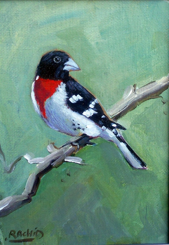 "Red Grosbeak Bird 5""x7 Black White Red Bird"