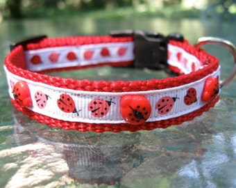 Red, White & Pink Ladybug Dog Collar, Little Dog Collar, Cute Dog Collar,  XS Dog Collar, Toy Dog Collar, Puppy Dog Collar, 5/8 inch width