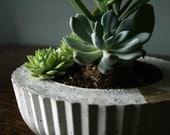 Coffee table concrete planter