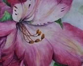 Original Watercolor Painting, aquarelle, still life,lilium, floral art, pink, close up,
