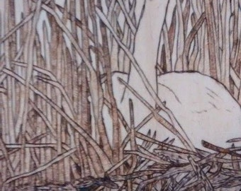 Wood Burning of Trumpeter Swan
