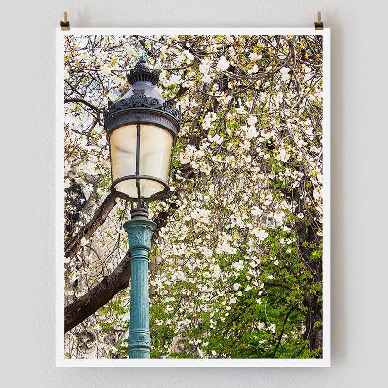 "Paris Photography, ""Paris Spring"" Paris Print Extra Large Wall Art Prints, Paris Wall Decor, College Student Gift for Her"