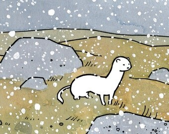 White Weasel Print, ink and watercolor drawing