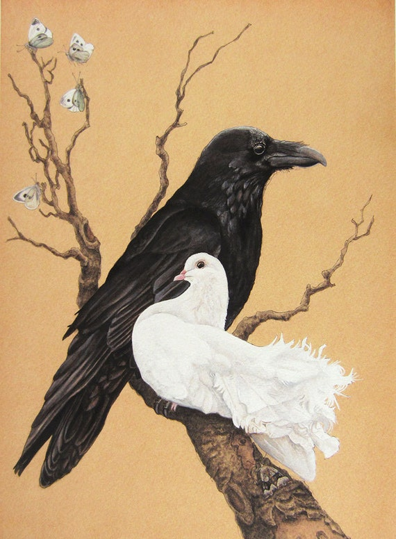 Dove and Raven- A Study in Black and White - 5x7 bird art print; Bird ...
