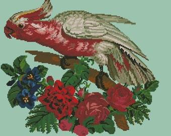 Parrot antique cross stitch or gobelin pattern