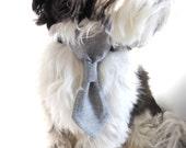Business Suit Grey Dog Neck Tie