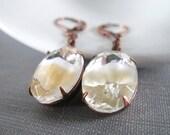Glass Earrings, Copper Earrings, Vintage Rhinestones, White Clear Beige, Beige Rhinestones, Tri Coloured Glass, Victorian Style,