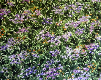 "One Half Yard Cut of Quilt Fabric, Field of Flowers, ""Wild in The Wilderness"",Katherine Gardner,Riverwoods, Sewing-Quilting-Craft Supplies"