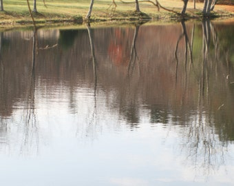 Reflection of autumn trees in the pond stock photo image free use