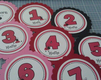 Ladybug Baby's 1st Year Tags /Pink Red Black / ANY COLOR / Ladybug First Year Tags / Ladybug Photo Tags