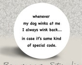 Whenever My Dog Winks at Me I Always Wink Back Incase It's Some Kind of Special Code - PINBACK BUTTON or MAGNET - 1.25 inch round