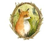 Fox Portrait - Archival Print of original watercolor, woodland, fox art