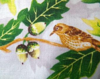 Bird Fabric  Acorn Cotton 3 Yards Oak Tree