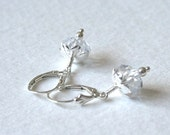 Silver Crystal Bridal Earrings Sparkling Beauties