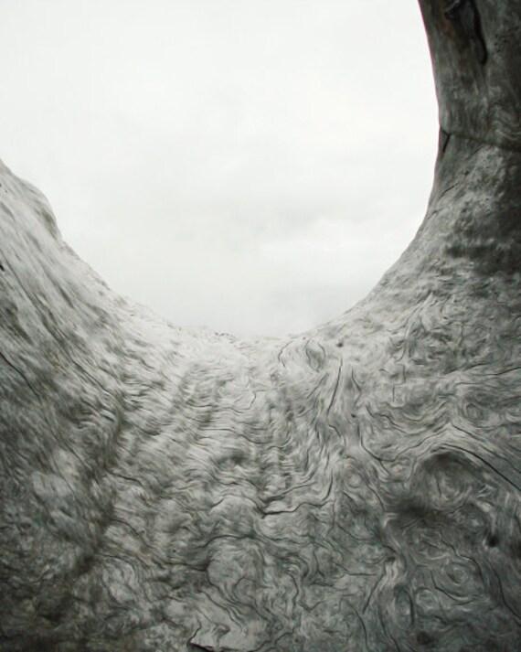 "White gray wall art - driftwood  - abstract photograph - modern rustic print -  beach cottage - minimalist art  ""The Ocean Calls"""