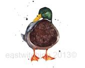 WATERCOLOR DUCK, Farmyard ANIMAL Duck Print, 8x10 print, ducks, mallards