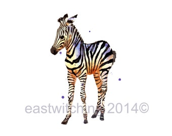 ZEBRA Print, zebra watercolor, safari animals