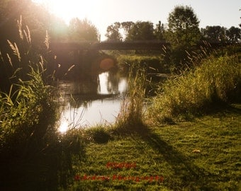 Sunset River Grass with bridge washington wall art sunlit room decor - Sunset Over the Newaukum - Fine Art Photograph by Ardent