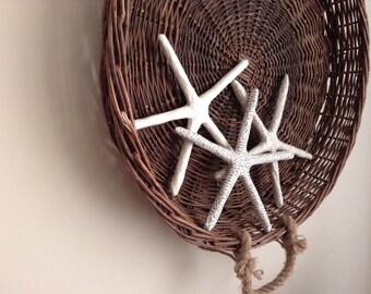 Upcycled paper mache starfish, recycled starfish