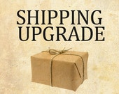 Shipping Upgrade Priority Mail or Express, 1-3 day shipping, US Only