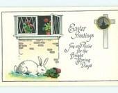 Vintage Easter Postcard  White Easter Bunny Rabbit  munching on geranium Vintage Easter post card