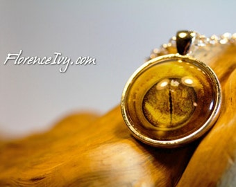 Dragon Crested Gecko Eye  Art Photo Pendant W/ Chain Handmade Jewelry Necklace Silver Charm Cabochon Reptile Lizard Exotic Pet Lover Gift