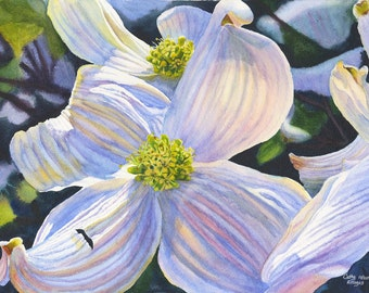 White Dogwood Art Watercolor Painting Print by Cathy Hillegas, 11x14, watercolor print, spring flowers, blue, purple, yellow, green, brown