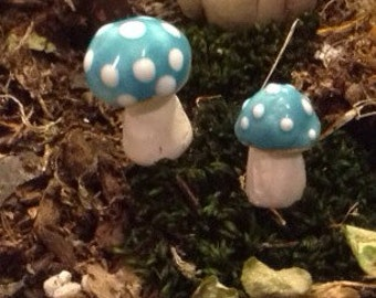 2 Turquoise Mushroom Toadstool  Statues  Home Grown Ceramic  Shrooms -  muscaria fly Teeny weeny shroomies