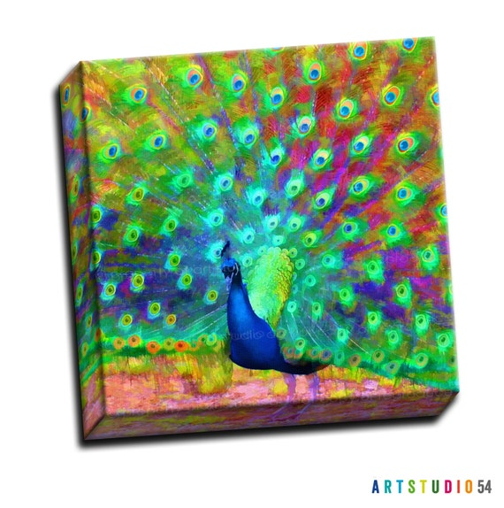 "Bright Painted Peacock Bird Feather -  6""x6"" to 36""x36"" - 1.25"" Deep - Gallery Wrapped Canvas - artstudio54"