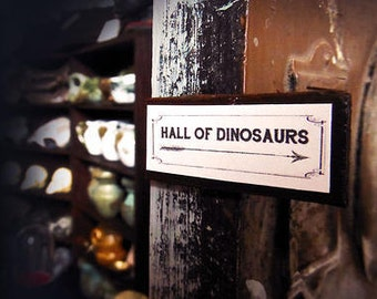 Miniature Sign --- Hall of Dinosaurs