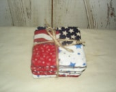 Americana Fabric Coasters, Americana, Home Decor, Housewares, Fabric Coasters, SCOFG, Ofg, Faap, Hafair