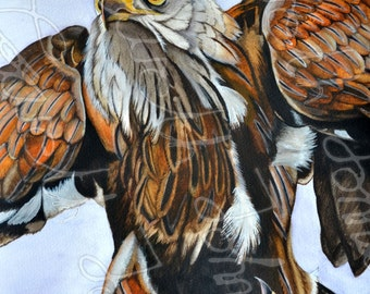 Red Kite Water color Painting, Print from original painting- Birds of prey,wildlife gifts,bird watchers gifts,mothers day,nature gifts
