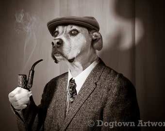 Sherlock Hound, large original photograph of a detective Boxer dog dressed like Sherlock Holmes
