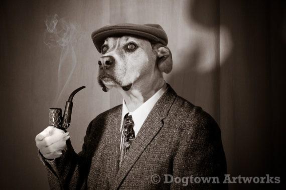 Sherlock Hound, large original photograph of a detective Boxer dog dressed like Sherlock Holmes