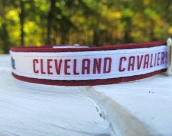 Cleveland Cavaliers Cat  or Small Dog Collar