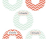 Baby Custom Clothing Closet Dividers - Coral and Mint Green Chevron