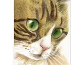 cat art print~The Face Of A Green-eyed Tabby~ small cat drawing cat lover gift Christmas home decor (111)