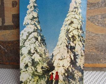 Vintage Postcard Winter Skiers Quebec Canada